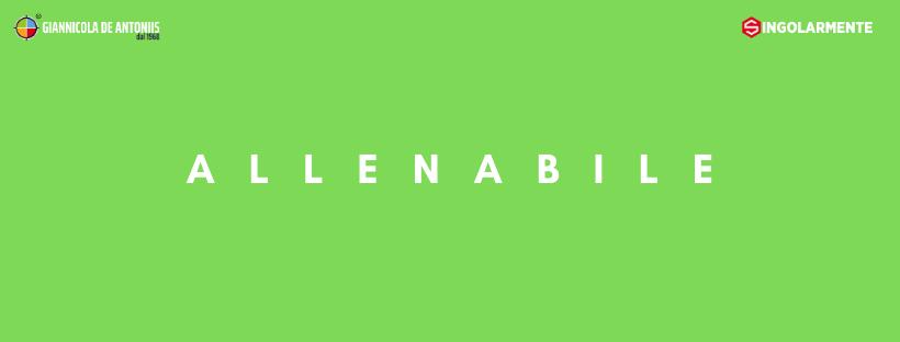 Allenabile
